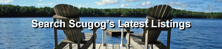 Search Scugog Newest Listings